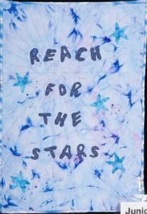 Junior Exhibitors. Anna de Boyett aged 11. 'Reach for the stars'